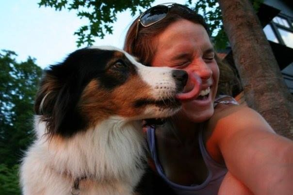 Faraway Farms Lucy Old Time Scotch Collie Pedigree Database